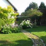 Vorgarten mit Hydrangea Annabell ( Hortensie)