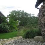 Gräser mit Steine, Rhododendron schirmförmig gezogen